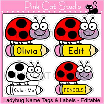 These fun ladybug / ladybird name tags and labels will look fantastic in your classroom! This set is so versatile because you can make any labels that you want with the included blank labels and editable PowerPoint file. These would make great bin or basket labels, job cards, flash cards and of course name tags.