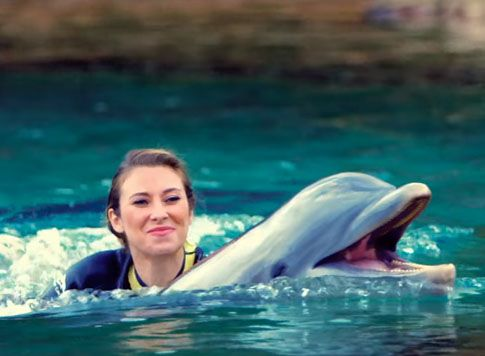 25 Best Ideas About Discovery Cove Orlando On Pinterest Florida Holiday Orlando Flordia And