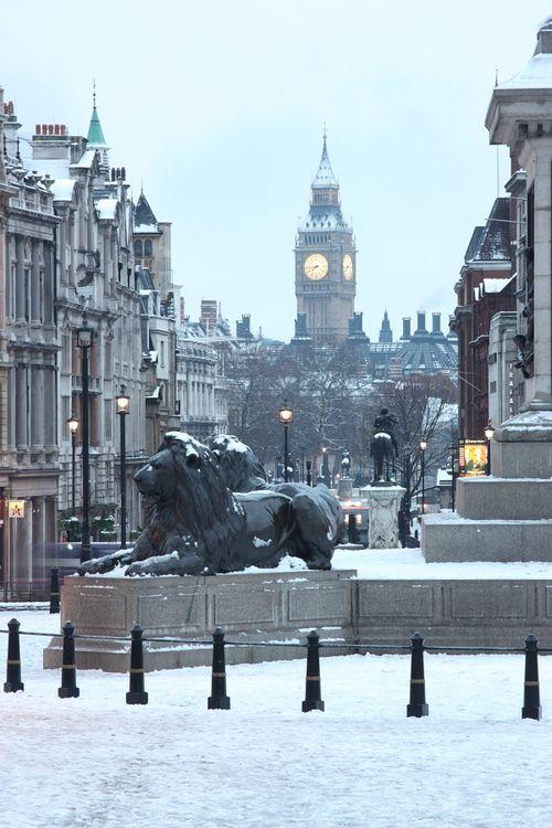 Lions in the snow in Trafalgar Square