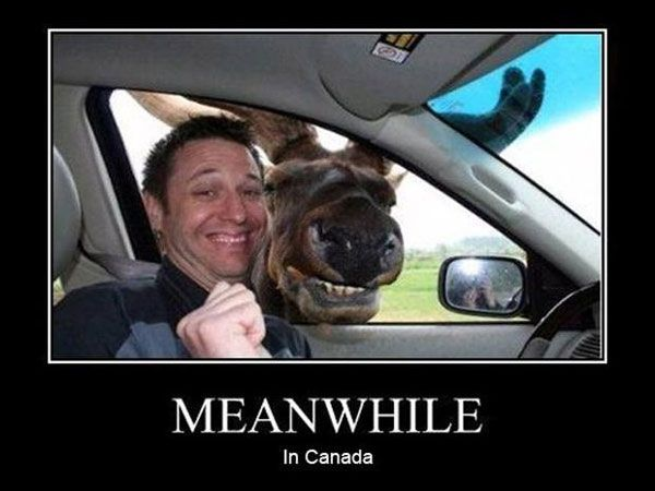 Meanwhile in Canada
