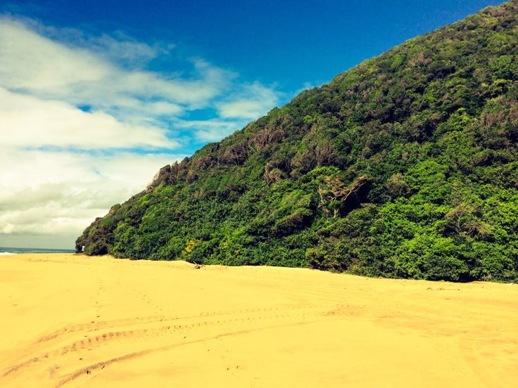 Maphelane, the tallest vegetated dune in the world... Walking distance from my home.