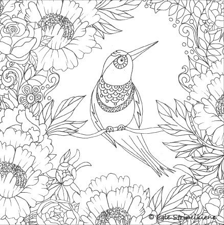 235 best Coloring for adults images on Pinterest   Coloring books ...