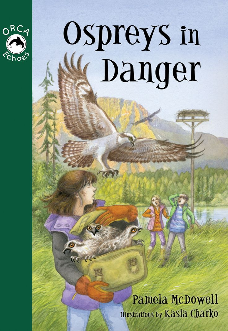 a study on ospreys Effects of bald eagle territoriality  covered that osprey nesting success in my study area was  effects of bald eagle territoriality on nesting ospreys.