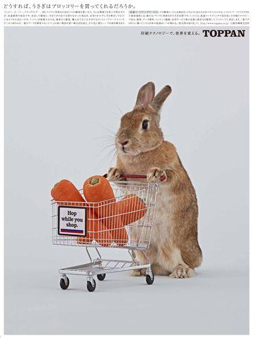 凸版印刷|どうすれば、うさぎはブロッコリーを買ってくれるだろうか。#凸版 #凸版印刷 #TOPPAN #toppan #広告 #新聞広告 #新聞掲載 #ad…