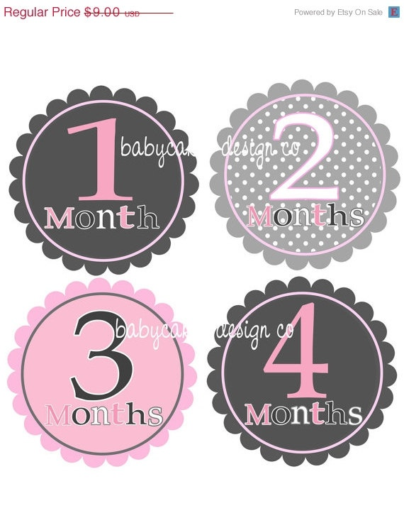 NEW YEAR SALE Monthly Onesie Stickers Pink & by babycakesdesignco, $6.30