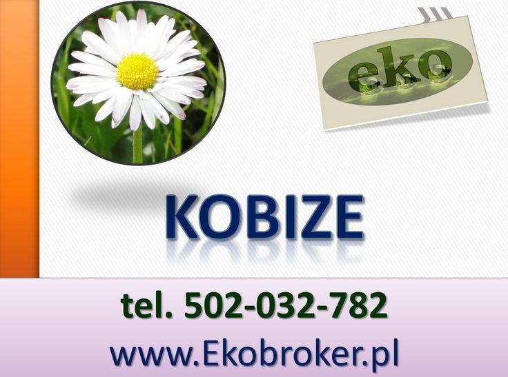 Rejestracja firmy w KOBiZE,  Sporządzenie zgłoszenia, sporządzenie raportu końcowego dla firmy, Pomoc w wypełnianiu raportów, Cena wykonania raportu, zgłoszenia na podstawie przygotowanych informacji jest ustalana indywidualnie dla każdego podmiotu. Kto ma obowiązek zgłosić się do KOBiZE ? - Zadzwoń tel. 502-032-782