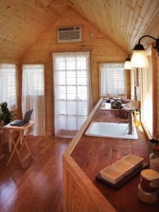 Sphere Trending: Niche Homes - Tiny House. Different layout for the kitchen. Not sure I like it, but it is a very different use of space than the Tumbleweed homes.