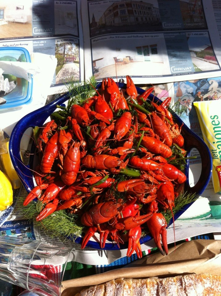 A nights harvest of european crayfish enjoyed in a local park