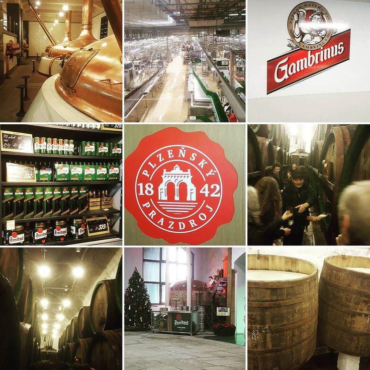 Pilsner Urquell Brewey at Pilzen The Czech Republic  #pilsnerurquell #beer #toursworthdoing #pilzen #czech #cerveza #맥주스타그램
