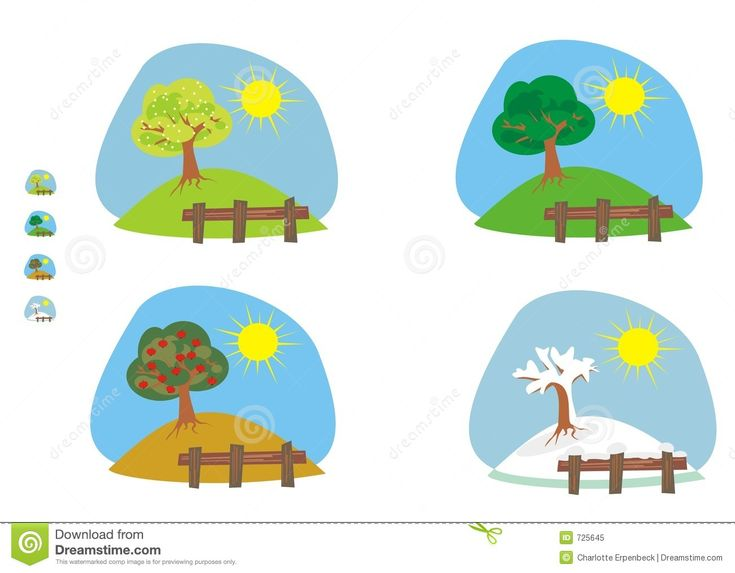 4 Seasons Tree Clipart