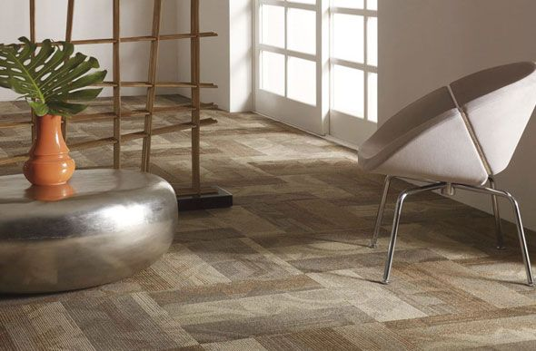 Shaw Feedback Carpet Tiles - Wholesale Carpet Tile Squares
