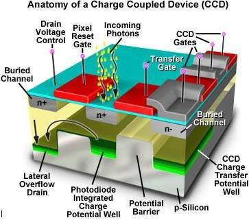 Anatomy of a charge coupled device