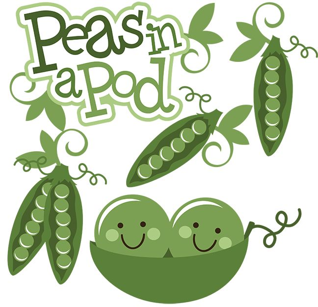 Peas In A Pod SVG scrapbook collection peas svg file friendship svg files for scrapbooking