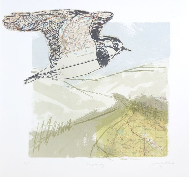 ARTFINDER: Lapwing in the landscape by Jenny McCabe - A collage/screen print based on my original pen & ink drawing, it is screen printed over collaged vintage book pages to create tones and textures. 6 layers ...