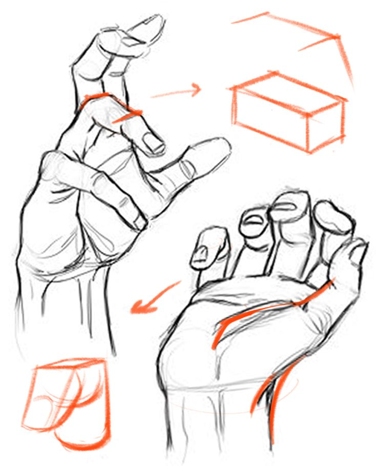 Constructing the hand from basic forms and following the primary - secondary - tertiary hierarchy resolves many other issues. It helps to draw the hand accurately from imagination, attach the fingers correctly to the palm, keep things in perspective, and even helps to shade. I'll also show you how a focus on structure doesn't mean you have to sacrifice gesture. - proko.com/227