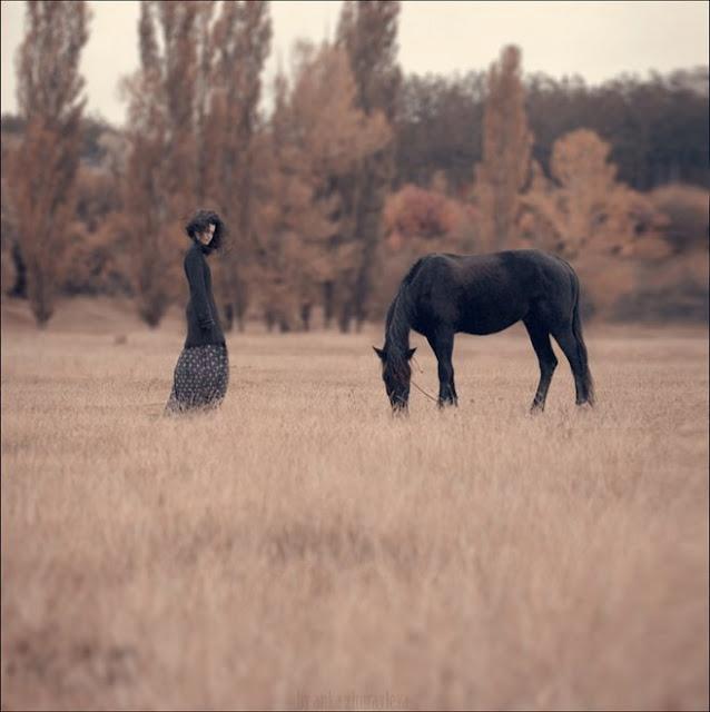 I love horses and I've always had a soft spot for black horses. Such beautiful animals.: Photos, Inspiration, Horses, Art, Ankazhuravleva, Fashion Photography, Anka Zhuravleva, Animal