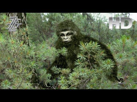New Bigfoot Evidence Shows 4 Different Sasquatch Species [FULL VIDEO] - YouTube