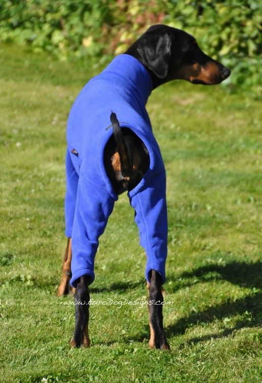EDD Ohio Fleece Dog Suit | Dog coats and fleeces ...