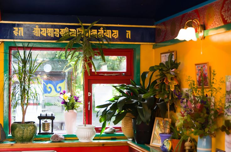 Tibetan cafe somewhere in US