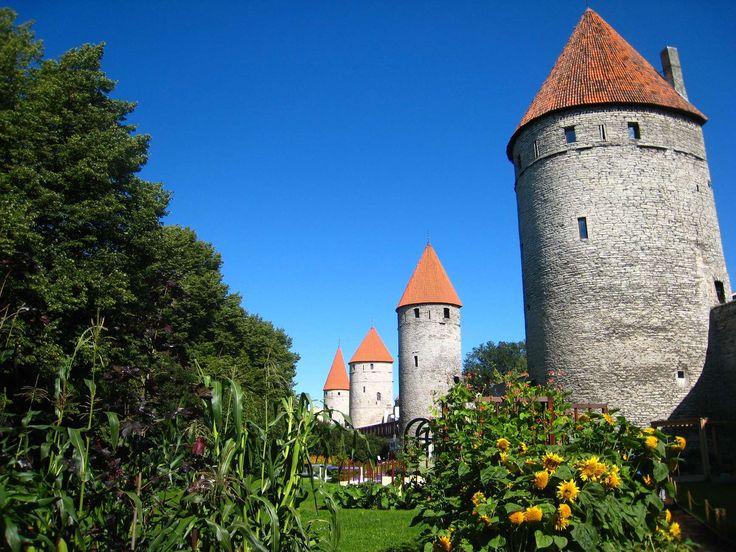 Rannamäe teen ja Nunnen linjaama Tornien aukio paljastaa keskiaikaisen kaupunginmuurin jukevyyden. Aukiosta tehtiin 1930-luvun alussa julkinen puisto, joka kunnostettiin vuonna 1990. Pyöreän keskusaukion se sai 2009. Kesäisin sieltä löytyy kansainvälinen kukkaisfestivaali. Alueella on myös leikkikenttiä ja kuntoilupaikkoja. #eckeröline #tallinna