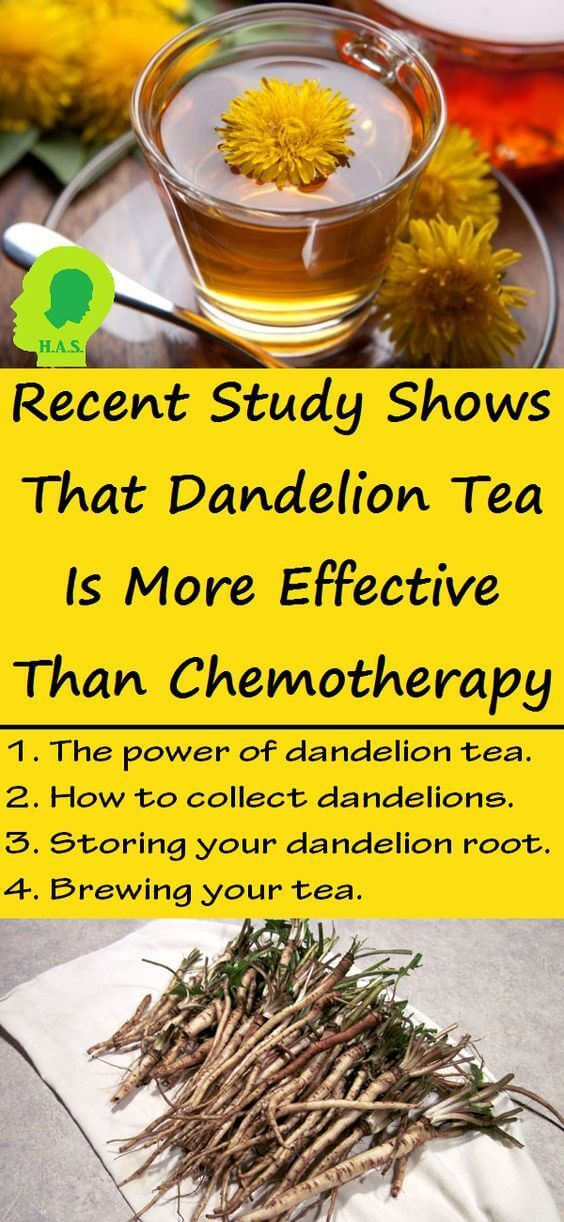 Dandelion has a powerful effect on cancer cells, causing them to reduce in size sometimes as quickly as 48 hours after first dosage.