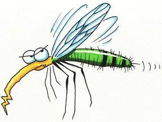 Szúnyog és kullancs ellen, link: http://antalvali.com/comment/24405/kullancs-es-szunyogriaszto-keverek