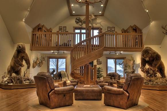 Great trophy room with a good couple bears got a few rugs for Trophy room design