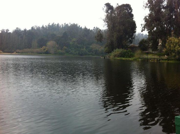 Muchas veces buscamos un tiempo y espacio para pensar o compartir. Desde Laguna Sausalito, Viña del Mar, Chile. http://www.demirar.cl/2013/08/laguna-sausalito-vina-del-mar/