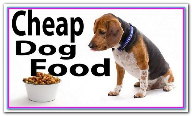 Best Dog Food For Puppies On A Budget Dog Food Recipes Cheap