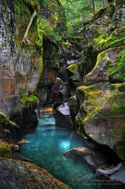 Avalanche Creek Gorge at Glacier National Park, Montana -- very popular/touristy hike right off of GTTSR/Trail of the Cedars; NE of Lake McDonald; connects to 3.1 mile hike to Avalanche lake (6.2 miles roundtrip)