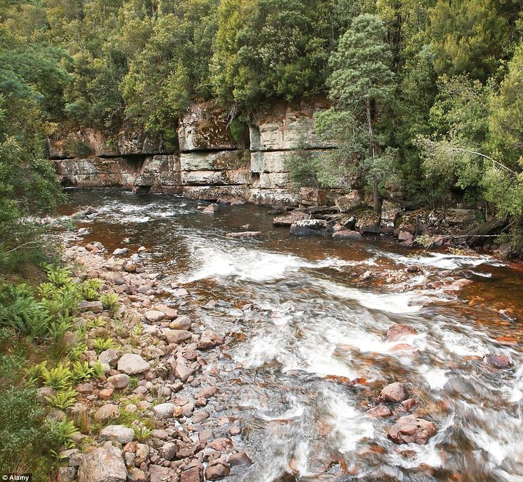 The Styx River (pictured) is among areas, some of which are reachable by road but several which were only accessible on foot, which are inte...