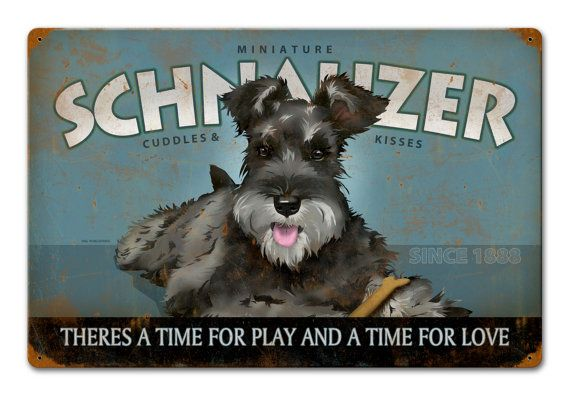 You will love this beautiful Schnuazer metal sign with Cuddles and Kisses verbiage. This original artwork is sublimated onto 24 gauge steel and then