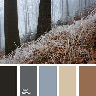 Offers a mix of blue-gray and brown shades, muted by the color of frosting. This scheme is ideal for creating home interiors of living rooms in soothing pastel colors for those who are used to living steadily and take their time. A study with prevalence of these shades should overlook the sunny side. Characterizes a classic wardrobe of a respectable man.