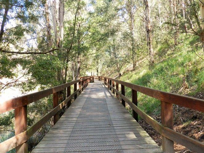 boardwalk, basalt lake, wilson botanic park, wilson park, parks in the City of Casey, parks in berwick, walking track,