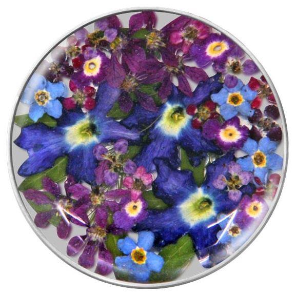 Blauw / Paarse Flora Insignia Munt 33-1178