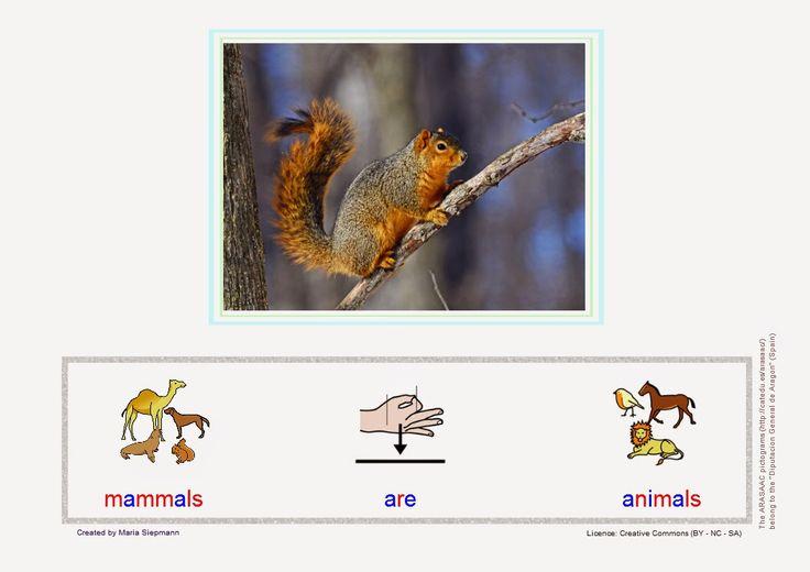 Babel - Free Language/Speech Therapy Resources. (Montessori Inspired): Making Sentences: Mammals