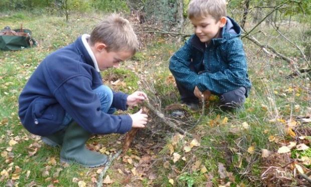 Wandelroute voor kinderen: het Boeiendste Bos In Nationaal Park #Maasduinen (3 km)