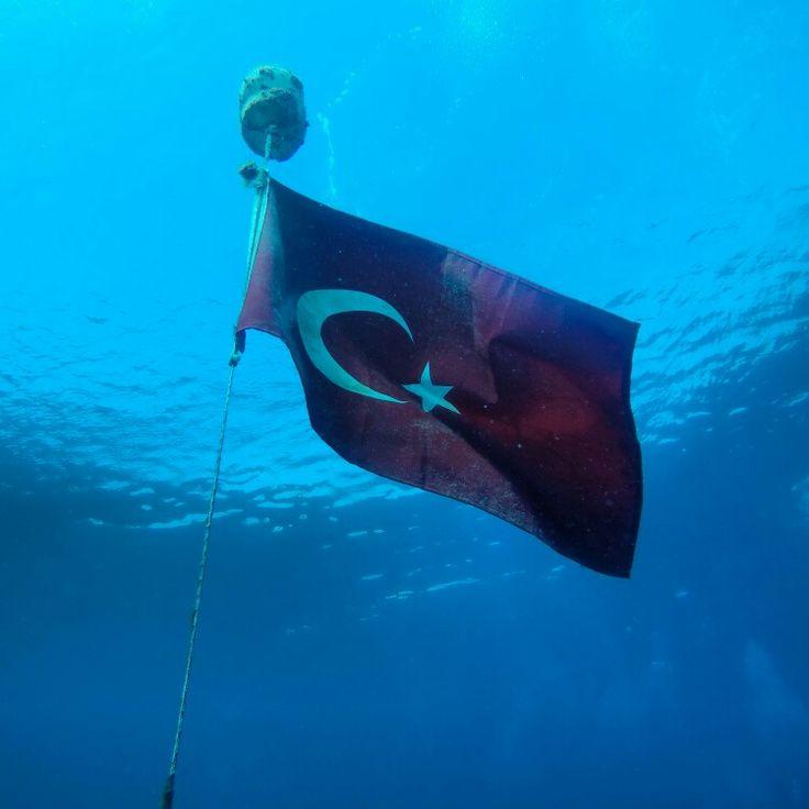 Ayvalık dalış okulu - ida dalış merkezi #scuba #scubadiving #diving #underwater #dalisnoktam #ayvalikdalis #idadalismerkezi #dalisokulu #daliskursu www.idadiving.com