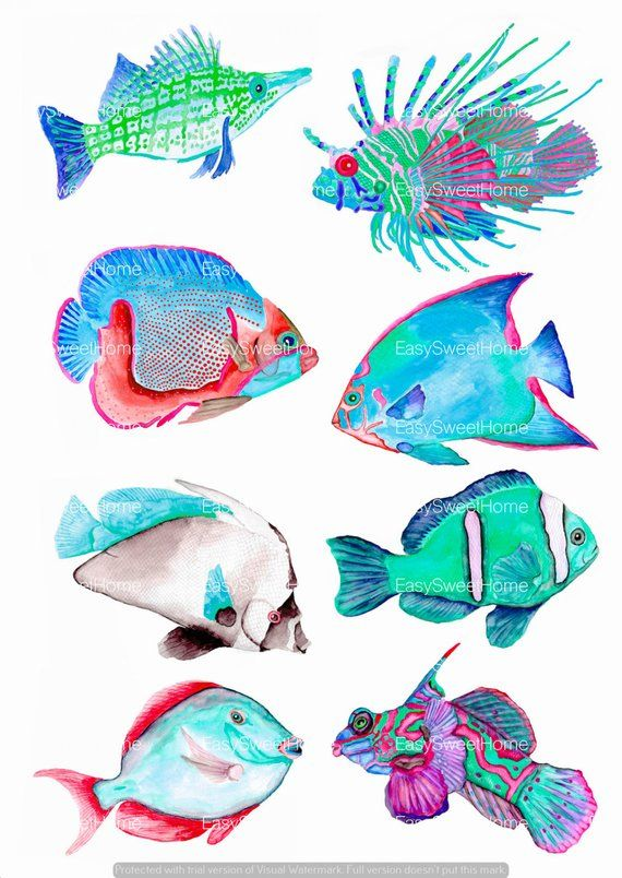 Coral Reef Fish Decals Turquoise, Bathroom Décor, 8-Set Bathroom Decals, Fish Wall Decals, Hand-Drawn Fish Decals, Home Décor