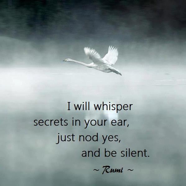 Rumi .: