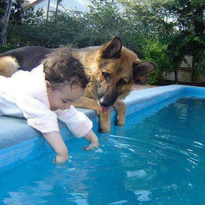 Cute!  How adorable!!! look at the dog, I think he is watching verrrry carefully to make sure this baby doesn't try and get into the water!! thank God the dog is there....