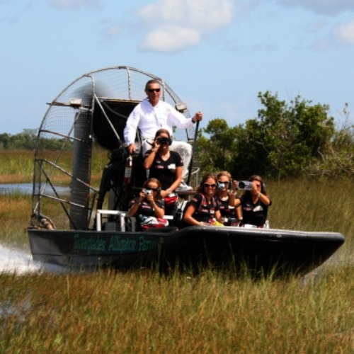 Take an airboat tour through the Everglades in Florida. Just like the movies!