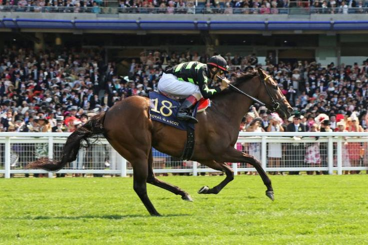 Lady Aurelia Leads American Trio Of 'Live Prospects' At York Festival - Horse Racing News | Paulick Report