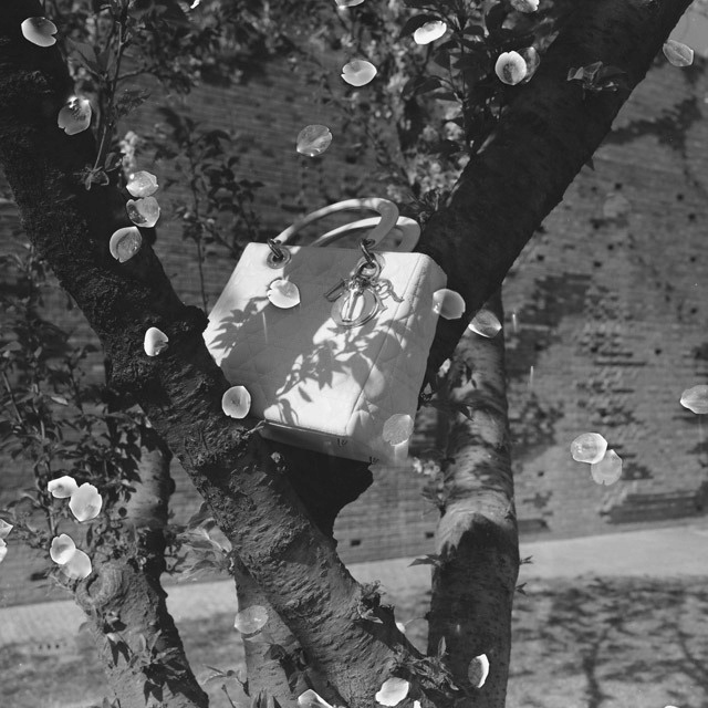 Lady Dior as seen by Rongrong & Inri
