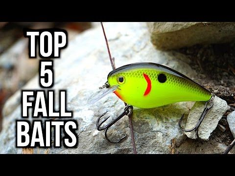 25 unique fishing lures ideas on pinterest fishing bass fishing and fishing tips Best lures for pond fishing