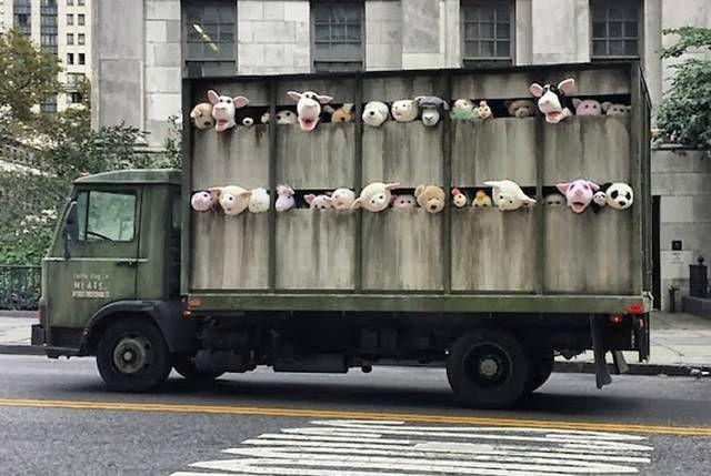 Una 'installazione in movimento', avvistata a Brooklyn, nei mesi in cui Banksy è stato in città con il suo progetto Better in Than Out. Un camion per il trasporto del bestiame dal quale spuntano le teste degli animali. Dalla fattoria, i peluches piangenti vengono scortati verso il mattatoio.