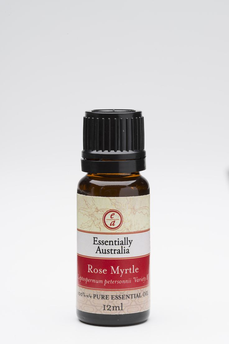Rose Myrtle (Leptospermum petersonii 'Variety B'). A new Australian essential oil, lemony, fruity, and followed with a rose aroma. Uplifting, anti depressive, calms noisy children. Use in an oil burner, diffuser or air freshener.