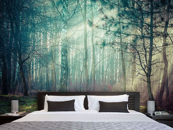Die besten 25 Fototapete Ideen auf Pinterest  Fotomotive Wald tapete und Betten