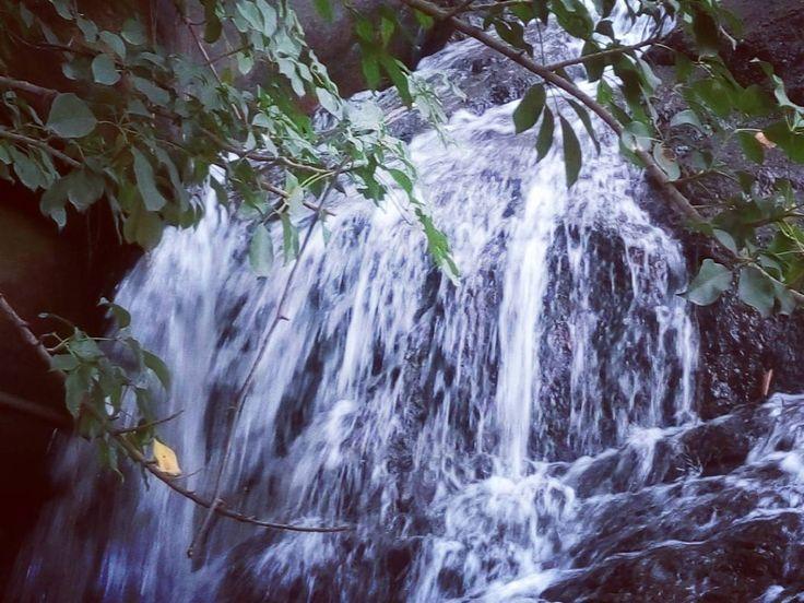 Lower Ghaghri waterfall at #netarhat in #Latehar District #latehartourism #jharkhand #india #incredibleindia #waterfalls #atithidevobhava #forest #travling #naturalbeauty