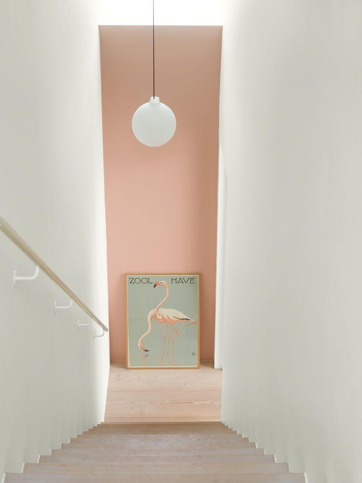 310816_4_LADY Pure Color 2992 Delightful Pink og 1624 Letthet
